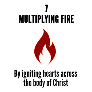 MULTIPLY FIRE2