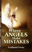 where_angels_make_mistake__n150